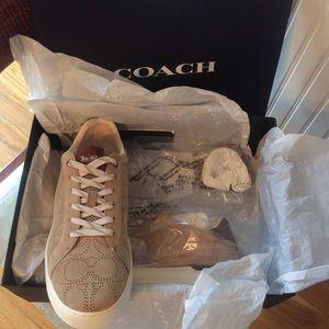 Men's COACH CLIP Low Top Sneakers